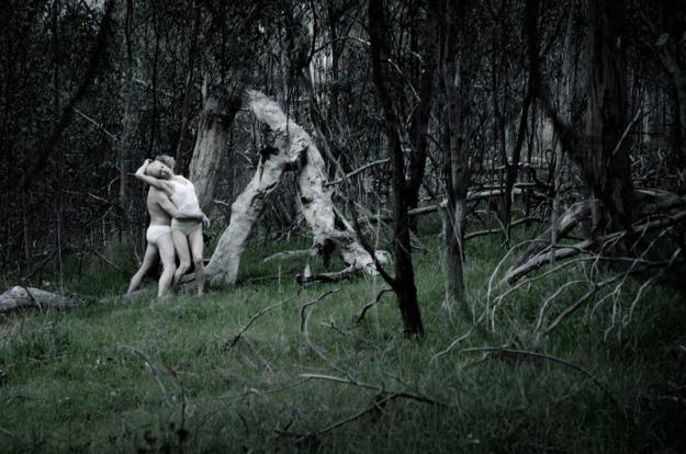 'WildLife II', 2013