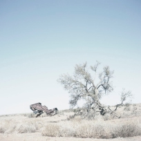 'Untitled II', 2010