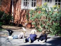 At Elwood Primary school