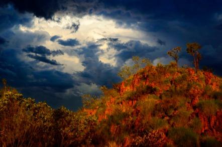 Building electrical storm. Halls Creek, The Kimberley, Western Australia.